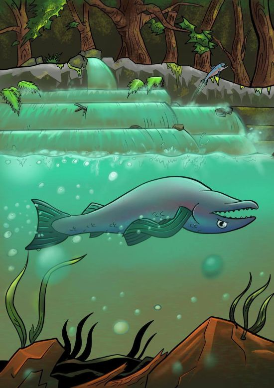 Dag 14 – Fisken